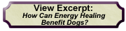 Excerpt from Energy Healing for Dogs
